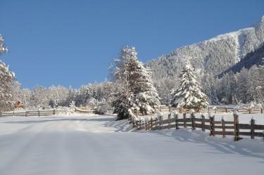 Winterlandschaft-(2)